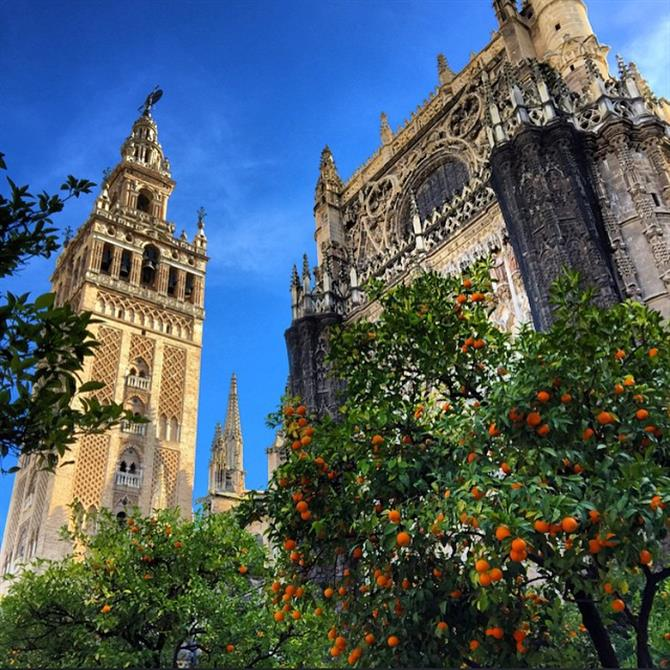 The Catherdral in Seville