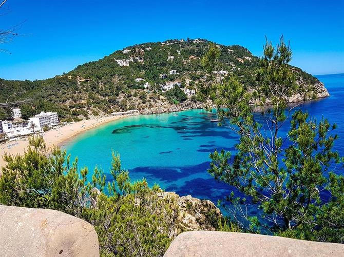 Cala Sant Vicent, Ibiza