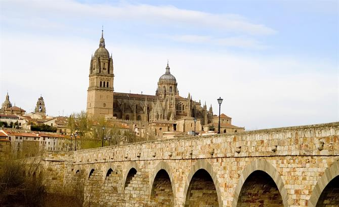 Salamanca view from the Roman Bridge