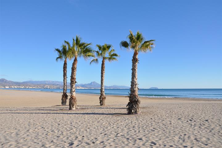 Prepare and plan the perfect holiday on Spain's Costa Blanca
