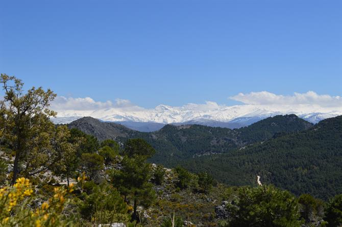 The Sierra de Huetor Natural Park, Granada