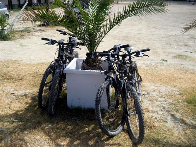 Mountain bikes have a break on the beach.