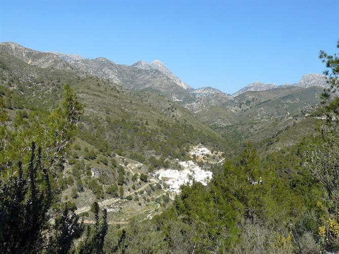 The village of Acebuchal, Frigiliana