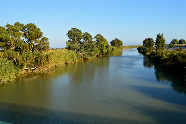 Guadalhorce river estuary natural area, Malaga