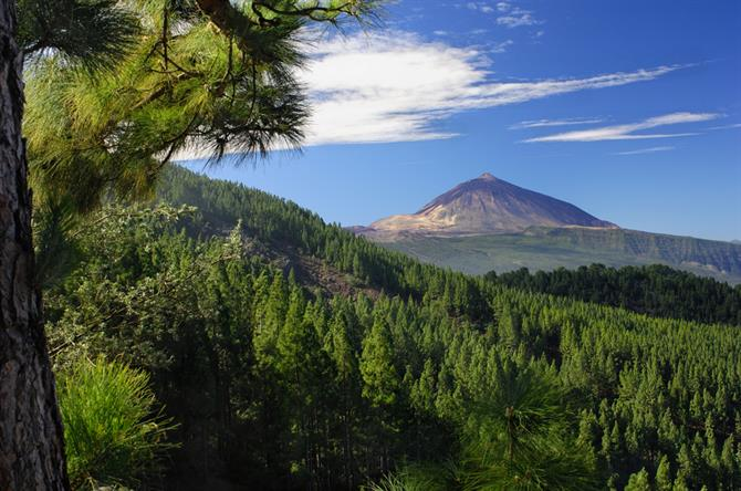 Teide volcano, Tenerife, Canary Islands