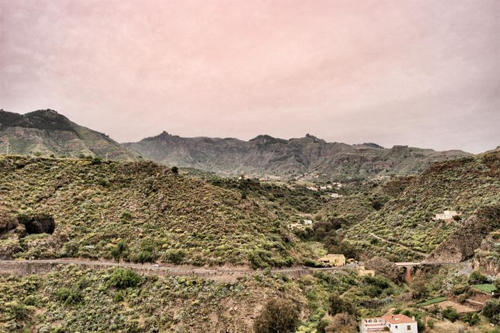 Discover Valsequillo, Gran Canaria's nature in bloom