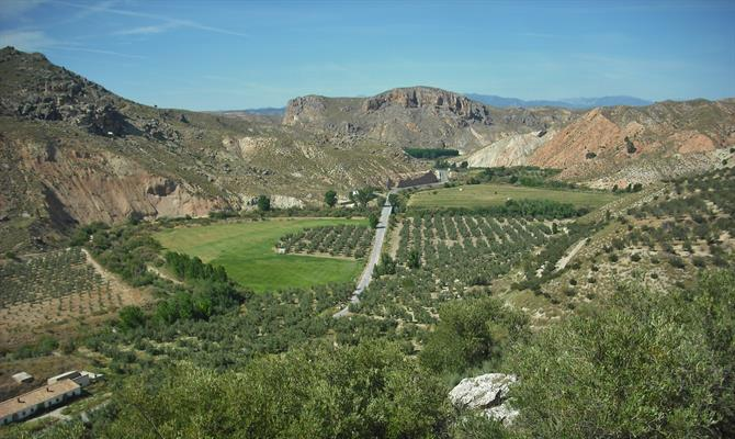 Green valley in Villanueva de las Torres