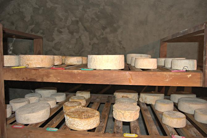 Fromages d'Espagne