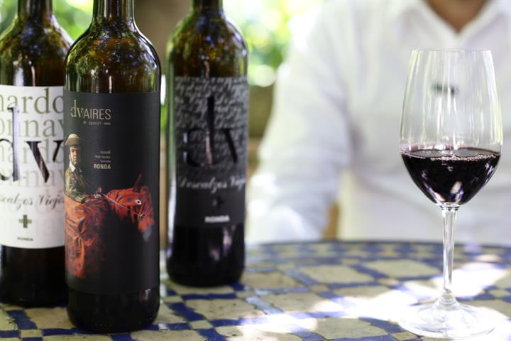 Descalzos Viejos: A private winery tour in Ronda