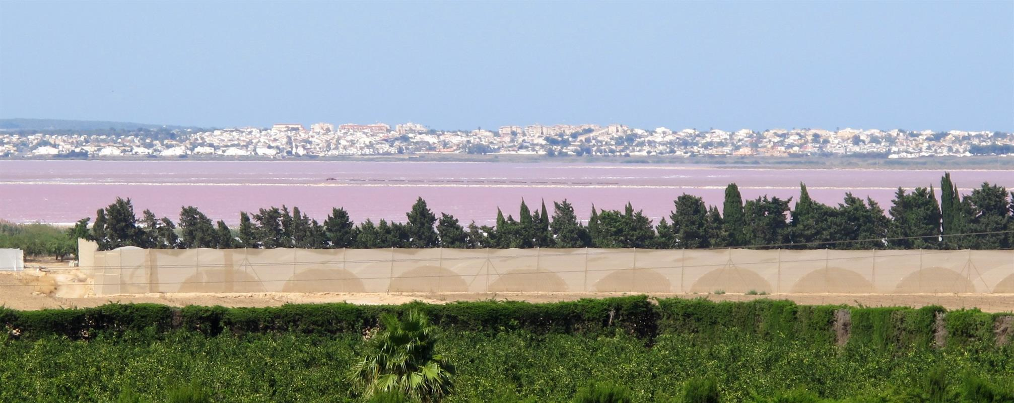 Alicante's pink and green salt lakes