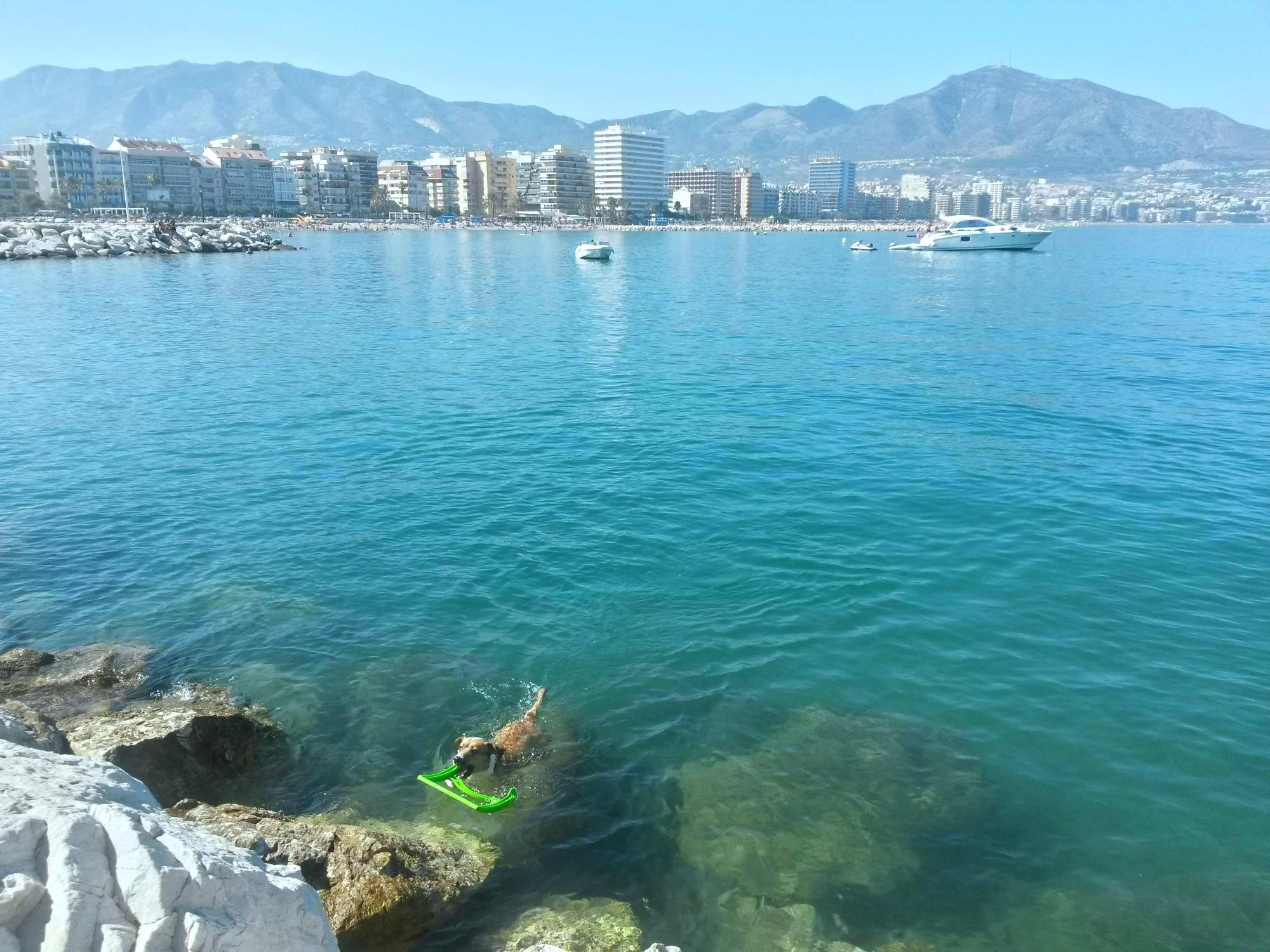 Best Time To Rent 7 Beaches That Will Have You Falling In Love With Fuengirola