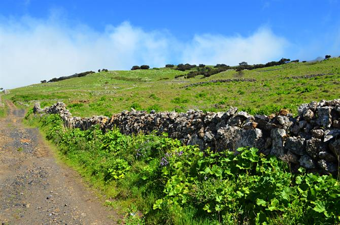 Walking on El Hierro, Canary Islands