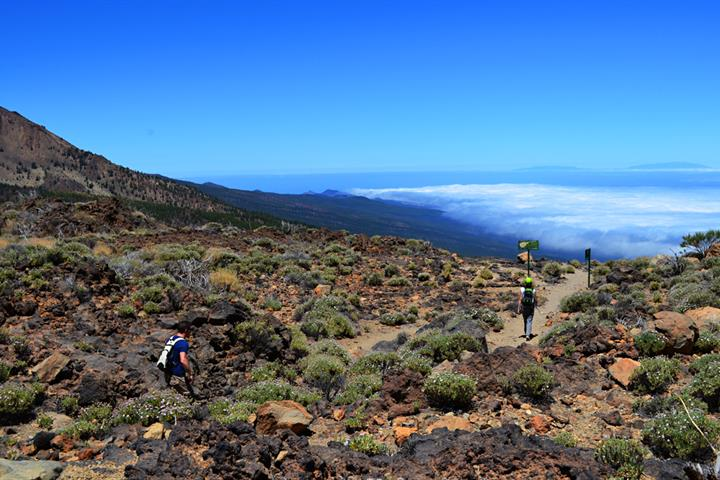 Ten things to do on Tenerife on a rainy day.