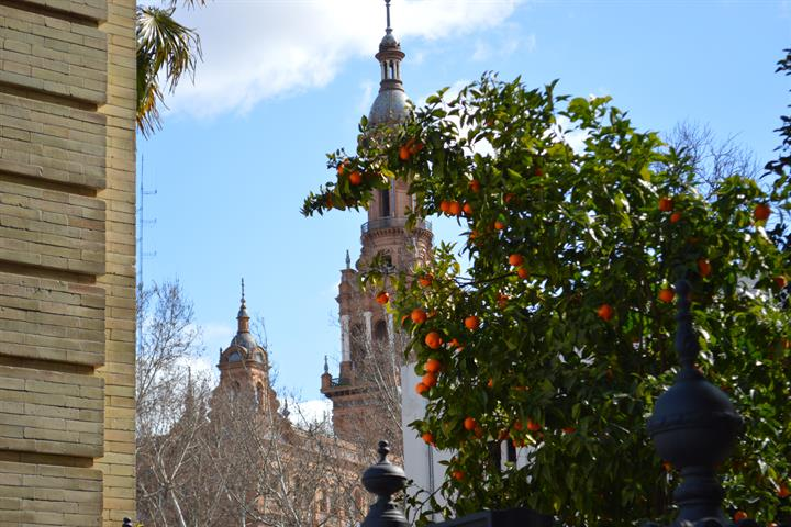 Visiting the Seville Cathedral & the Giralda Bell Tower