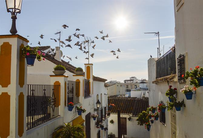 Estepona's historic center