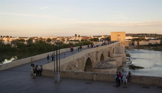 Cordoba puente romano in the evening