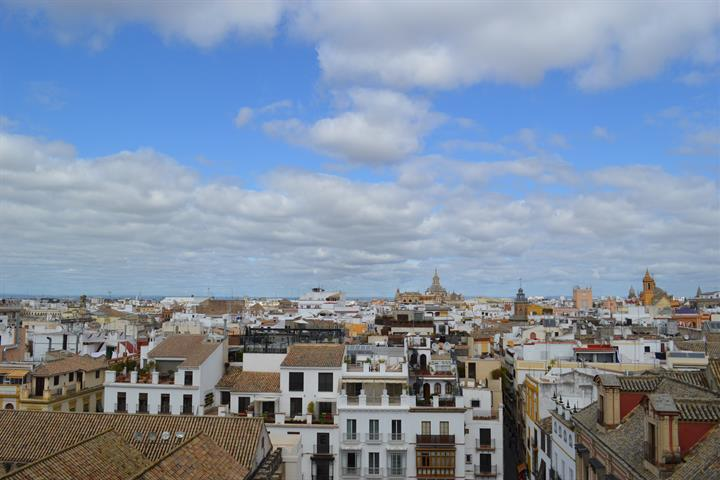 The Must-Sees of Seville, Spain