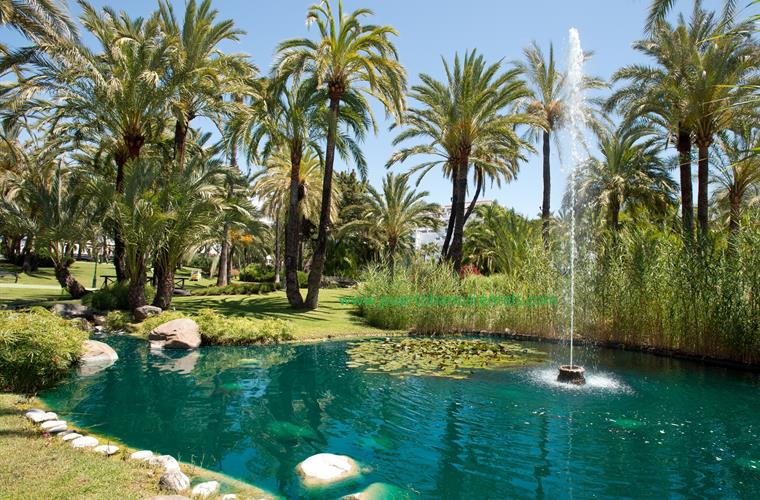Relax by the stream, lily ponds & fountains in Playas del Duque