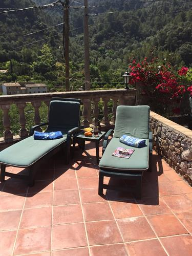 6 sun loungers available with cushion