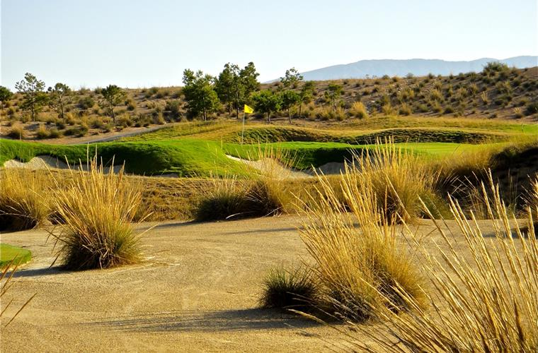 Alhama Signature Golf Course.