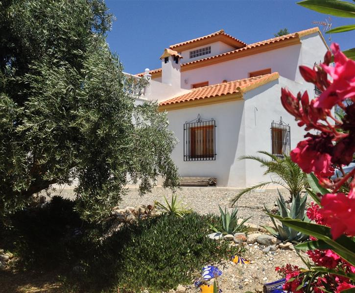 Rental Property Albox Spain