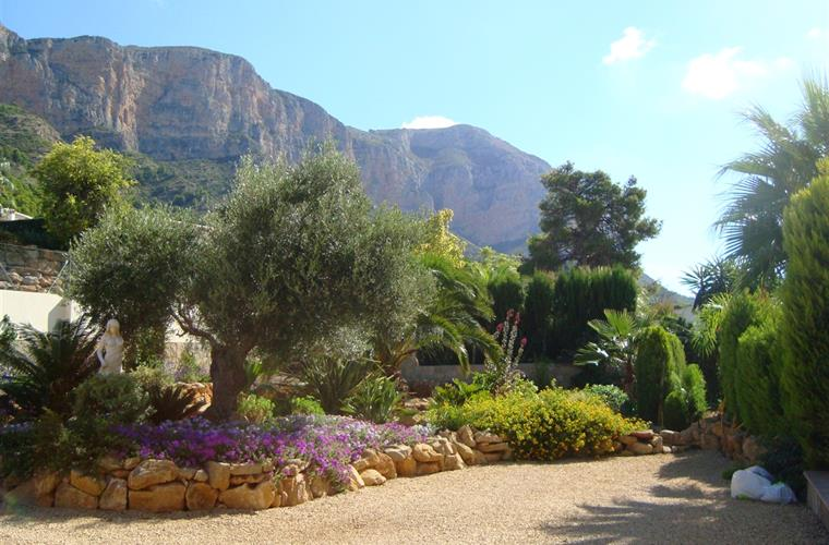 views of more garden and montgo moutain
