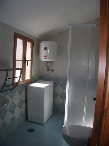Shower room and washing machine