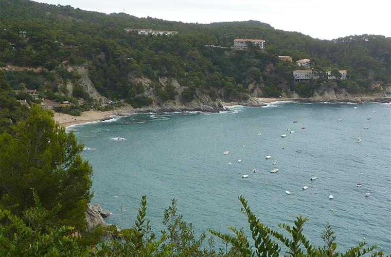 Bay of Sta.Maria de Llorell