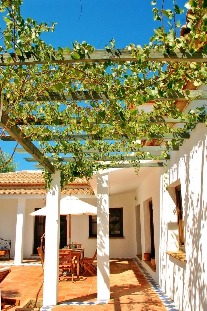 Vine covered Sun Terrace