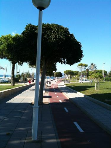 Miles of bike lanes by the sea