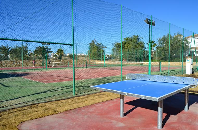 Tennis Courts and Table Tennis Table