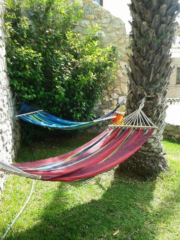 Three hammocks in the shade of a palm tree with great views.