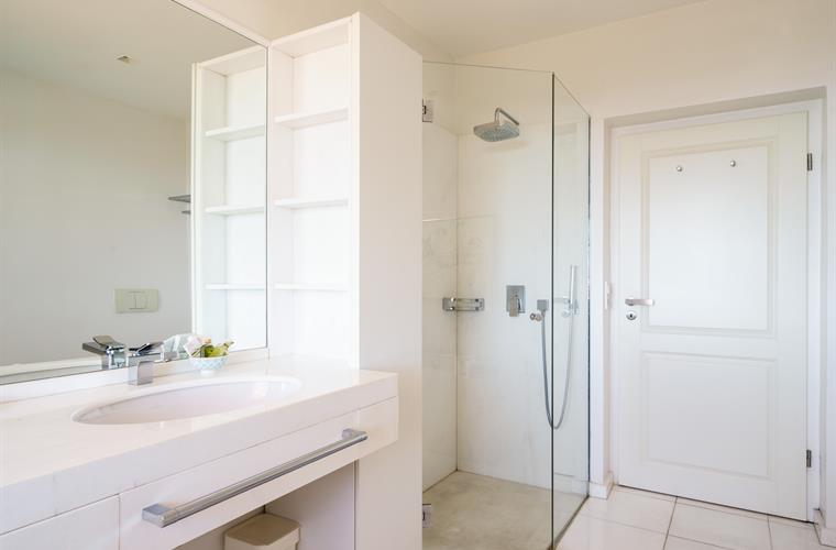 Master bathroom: shower cabin