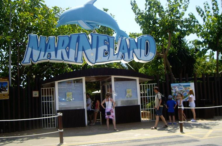 Puerto Portals 'Marineland' excellent dolphin shows