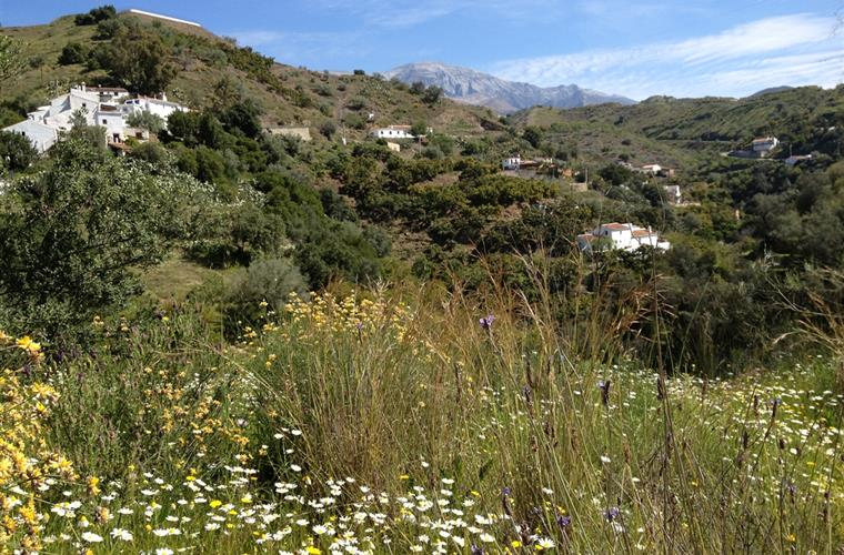 Our home is located in a nature park in the mountains of Andalucia
