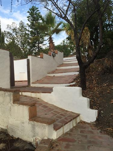 Steps up to the villa, into the pool and down to the lower garden