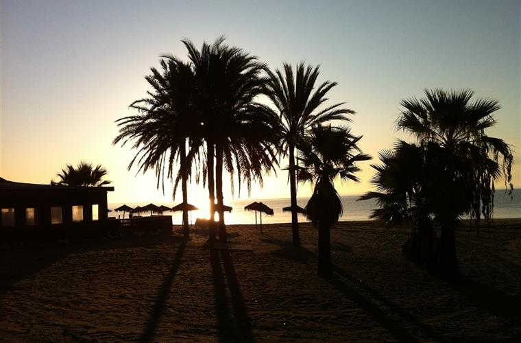 Sunrise Estepona Palm Beach