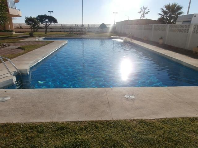 The pool- open all year