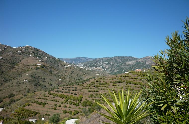 View on Mountains