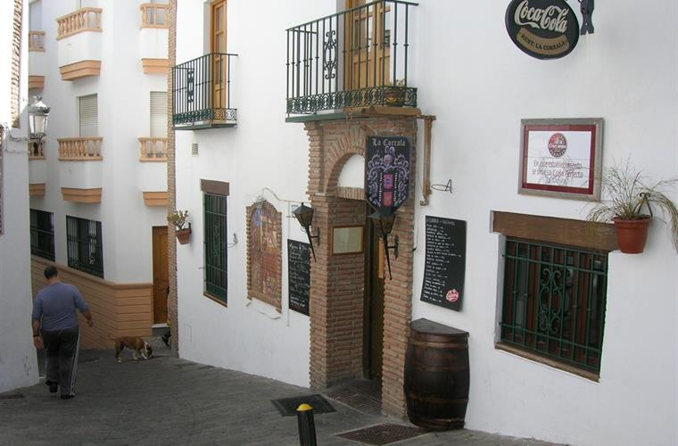 The local tapas bar/restaurant, with flamenco shows.