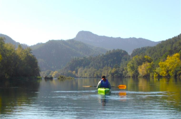 Kayaking through the Natural Park on the Ebro River