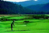 superb golf courses