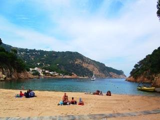 Sa Riera beach - 5mins by car