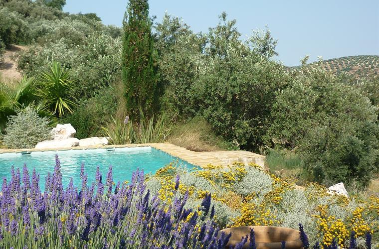 The pool is set in charming gardens overlooking the valley