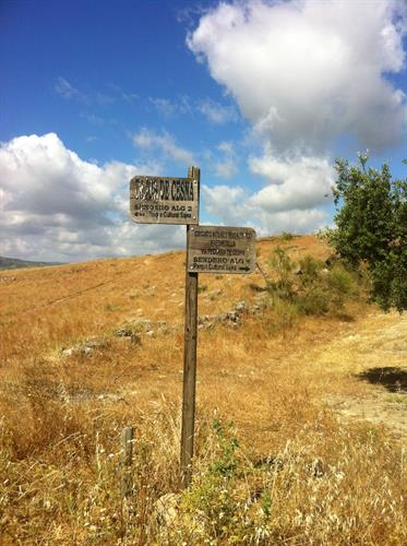 Walkers are free to roam the Andalucian countryside