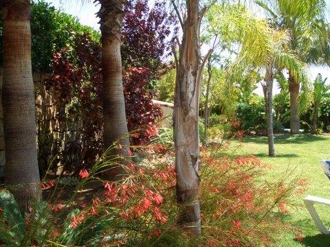 Private mature and secluded gardens