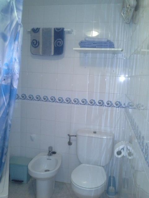 Bathroom with bidet shower and bath tub