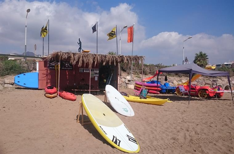 Beach surf boards & canoes.