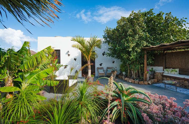 Tropical courtyard garden