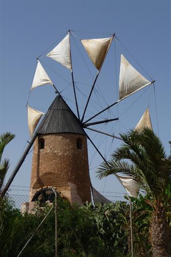 One of the many local windmills